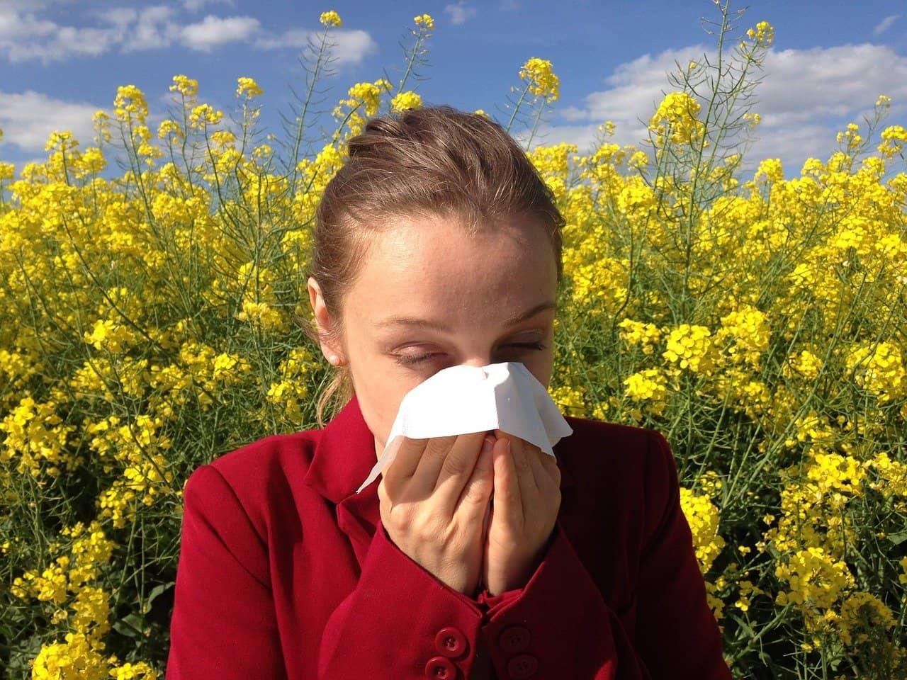 allergie saisonnière au pollen