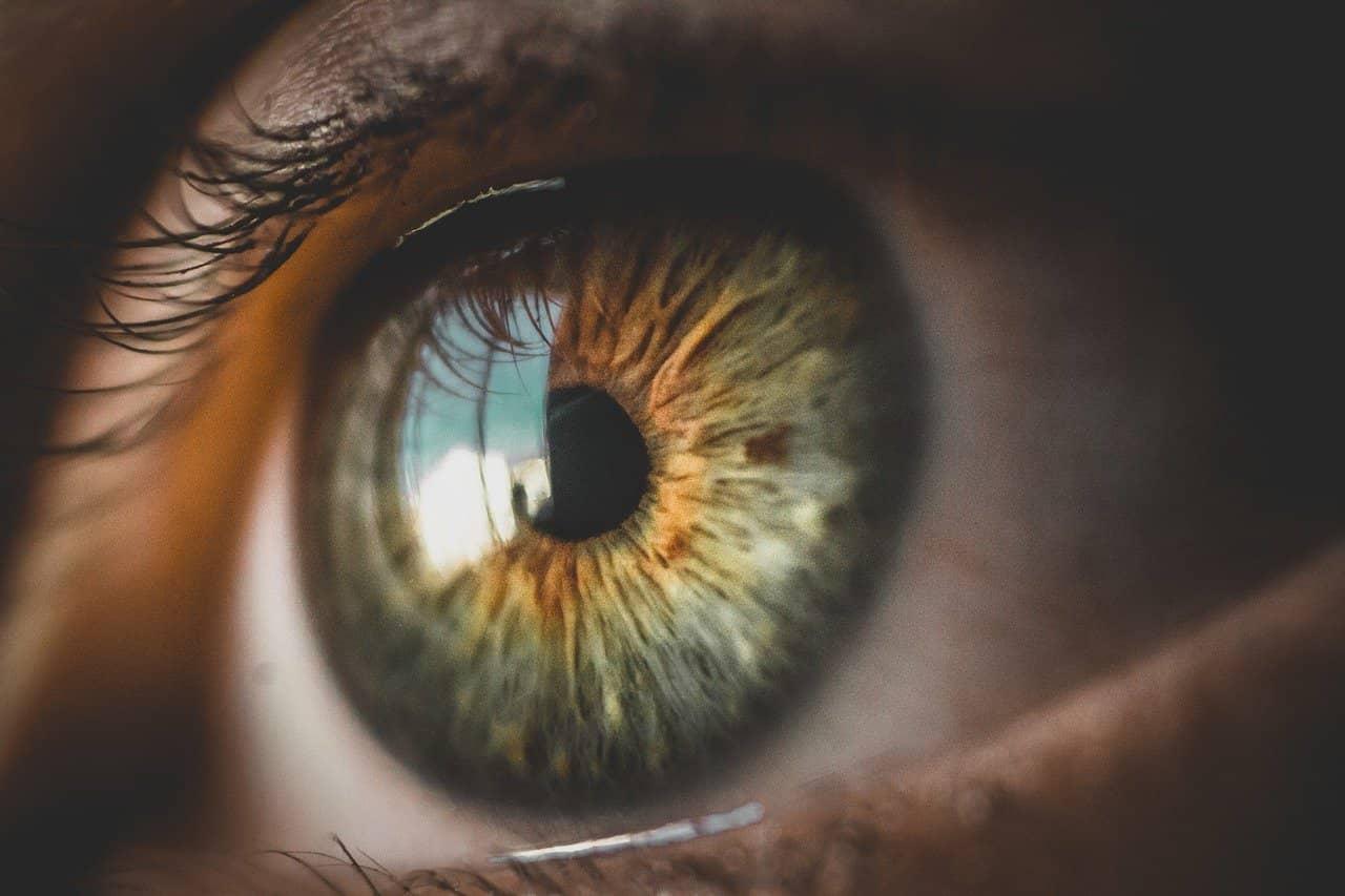 DMLA, fatigue des yeux… Quelles sont les plantes et remèdes naturels ?